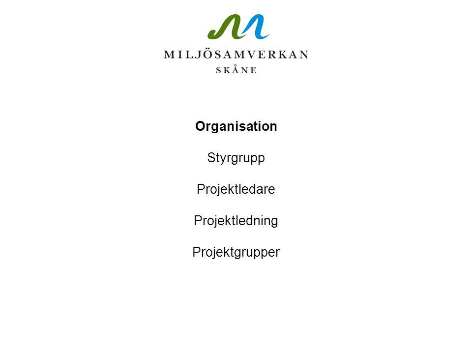 Organisation Styrgrupp Projektledare Projektledning Projektgrupper