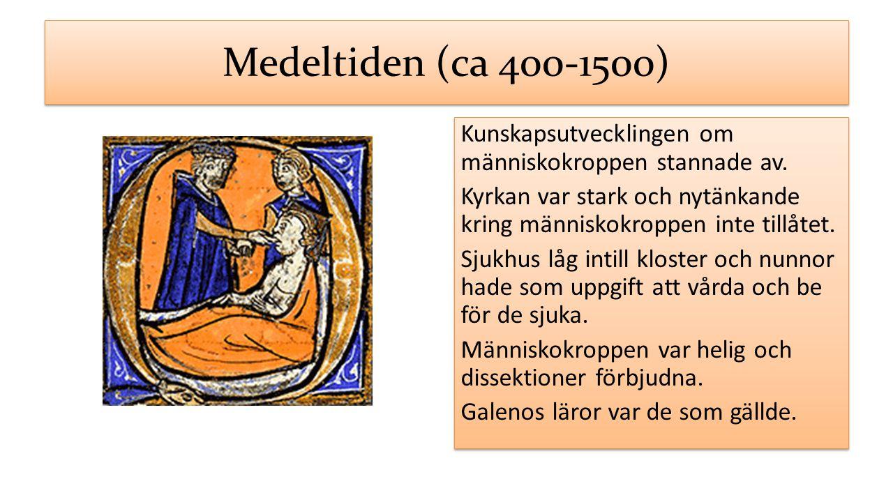 Medeltiden (ca 400-1500) Kunskapsutvecklingen om människokroppen stannade av. Kyrkan var stark och nytänkande kring människokroppen inte tillåtet. Sju