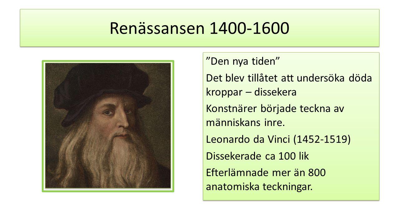 """Renässansen 1400-1600 """"Den nya tiden"""" Det blev tillåtet att undersöka döda kroppar – dissekera Konstnärer började teckna av människans inre. Leonardo"""