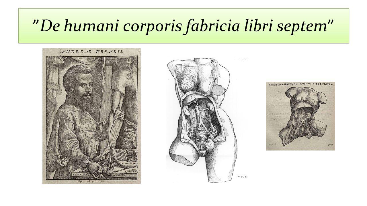 """""""De humani corporis fabricia libri septem"""""""