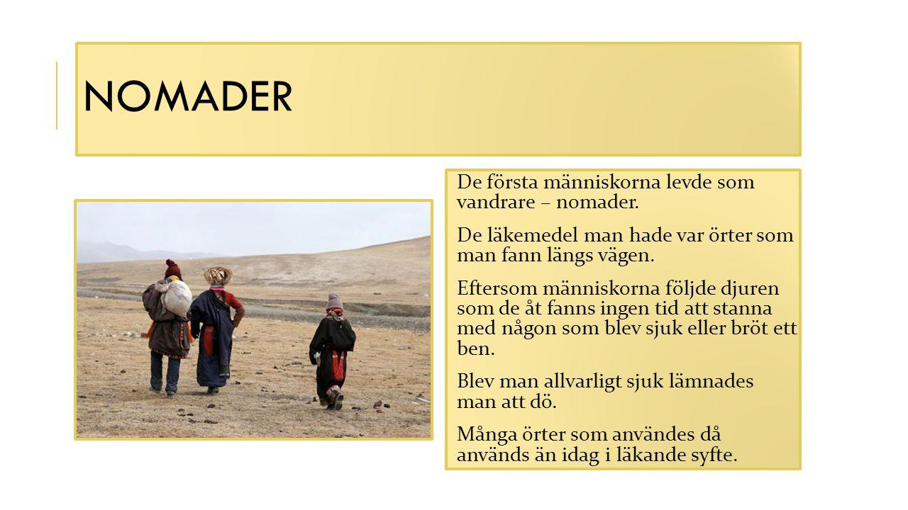 NOMADER De första människorna levde som vandrare – nomader. De läkemedel man hade var örter som man fann längs vägen. Eftersom människorna följde djur
