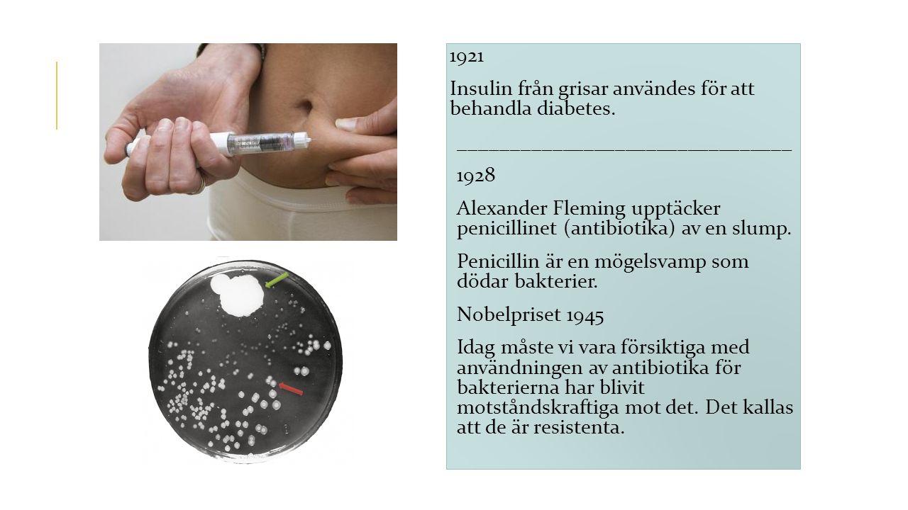 1921 Insulin från grisar användes för att behandla diabetes. ________________________________ 1928 Alexander Fleming upptäcker penicillinet (antibioti