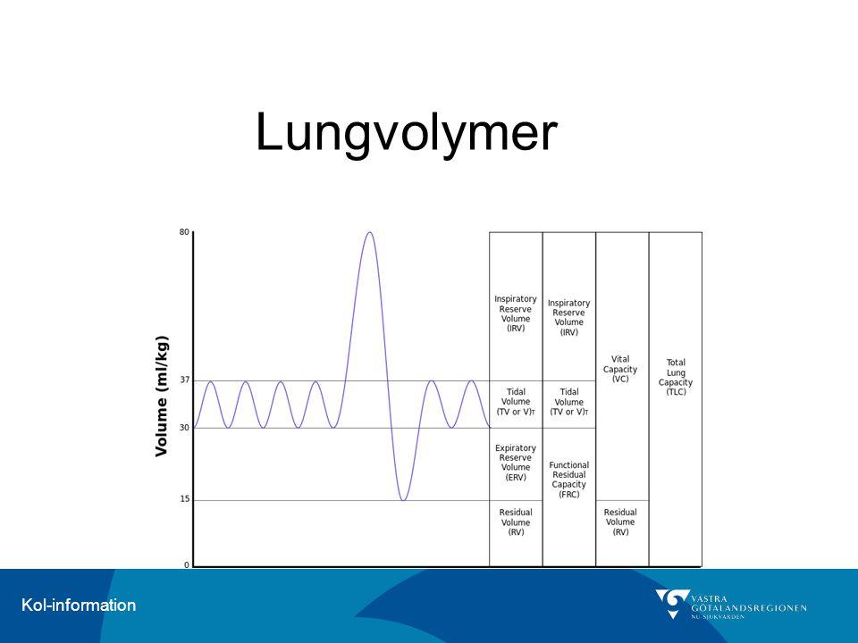 Lungvolymer
