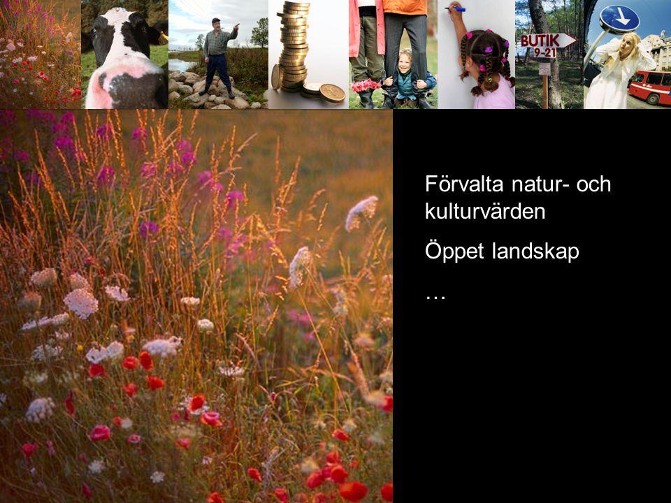 Kom service offent service kommunikationer Förvalta natur- och kulturvärden Öppet landskap …