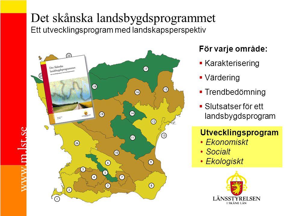 Det skånska landsbygdsprogrammet Ett utvecklingsprogram med landskapsperspektiv För varje område:  Karakterisering  Värdering  Trendbedömning  Slutsatser för ett landsbygdsprogram Utvecklingsprogram Ekonomiskt Socialt Ekologiskt