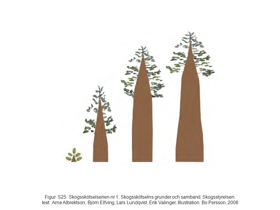 Figur S25. Skogsskötselserien nr 1, Skogsskötselns grunder och samband, Skogsstyrelsen, text: Arne Albrektson, Björn Elfving, Lars Lundqvist, Erik Val