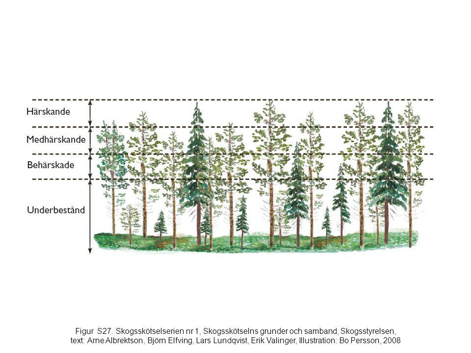 Figur S27. Skogsskötselserien nr 1, Skogsskötselns grunder och samband, Skogsstyrelsen, text: Arne Albrektson, Björn Elfving, Lars Lundqvist, Erik Val