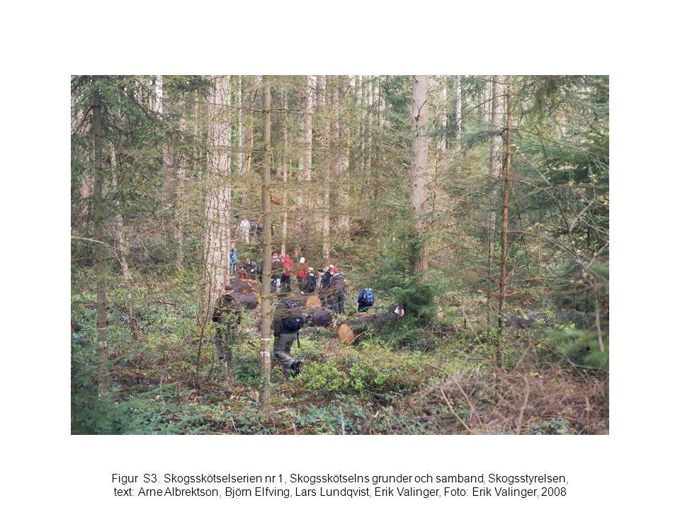 Figur S3. Skogsskötselserien nr 1, Skogsskötselns grunder och samband, Skogsstyrelsen, text: Arne Albrektson, Björn Elfving, Lars Lundqvist, Erik Vali