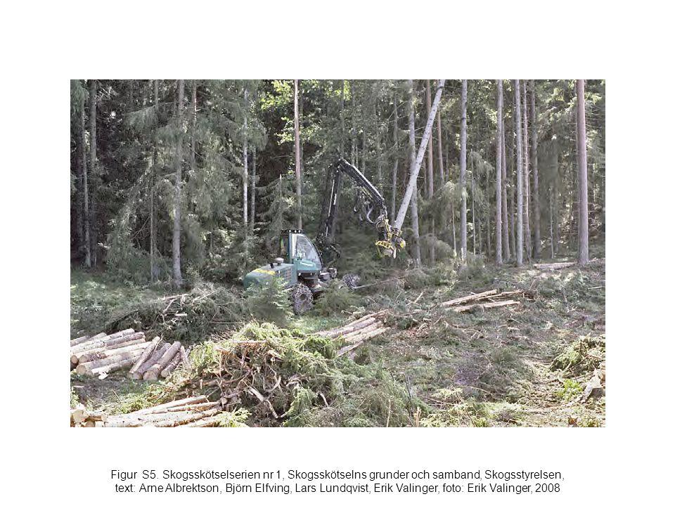 Figur S5. Skogsskötselserien nr 1, Skogsskötselns grunder och samband, Skogsstyrelsen, text: Arne Albrektson, Björn Elfving, Lars Lundqvist, Erik Vali