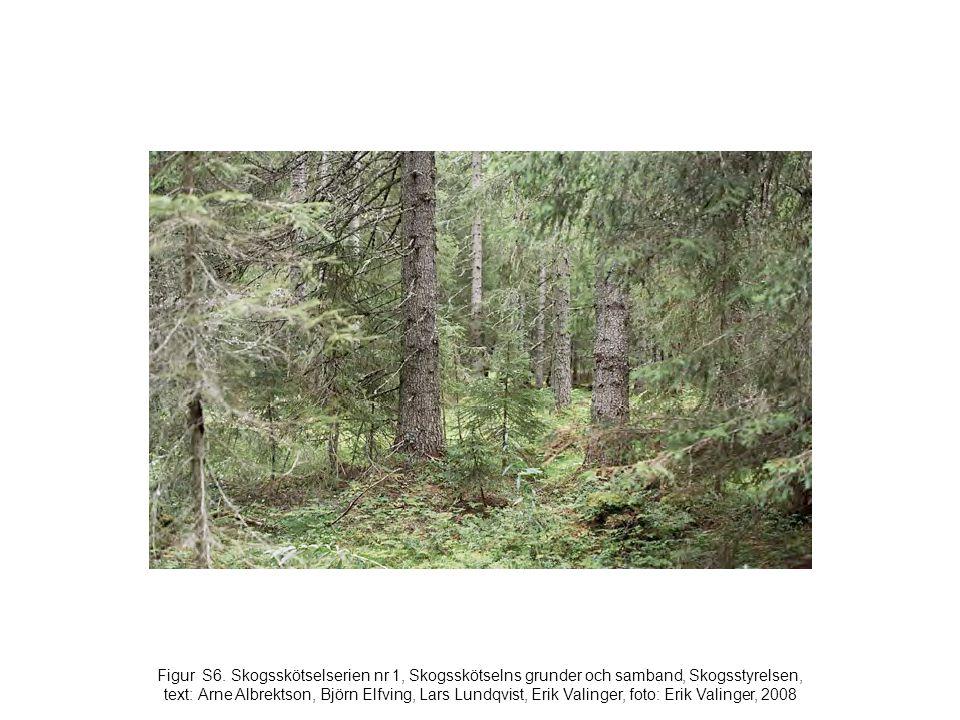 Figur S6. Skogsskötselserien nr 1, Skogsskötselns grunder och samband, Skogsstyrelsen, text: Arne Albrektson, Björn Elfving, Lars Lundqvist, Erik Vali