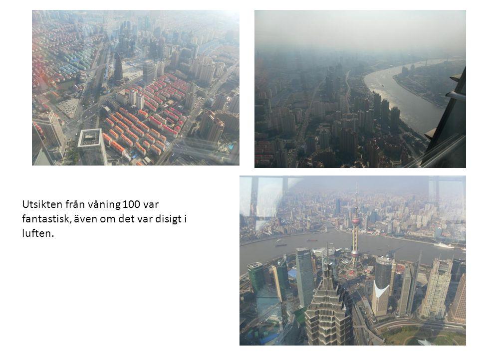 Utsikten från våning 100 var fantastisk, även om det var disigt i luften.