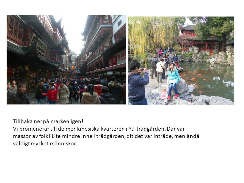 Tillbaka ner på marken igen. Vi promenerar till de mer kinesiska kvarteren i Yu-trädgården.