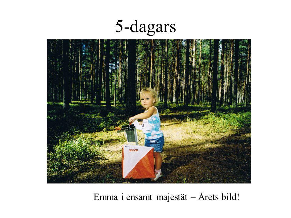 5-dagars Emma i ensamt majestät – Årets bild!