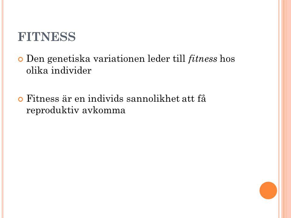 FITNESS Den genetiska variationen leder till fitness hos olika individer Fitness är en individs sannolikhet att få reproduktiv avkomma