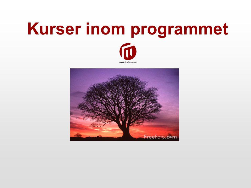 Kurser inom programmet