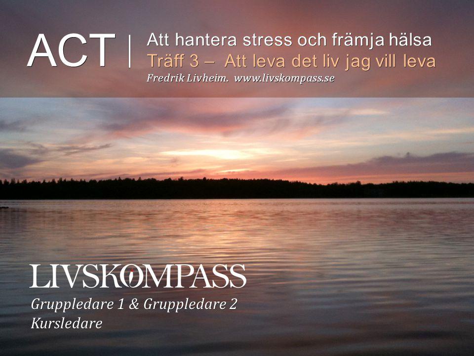 Hur vårt tänkande kan skapa lidande, problem & stress och ibland hindra oss KÄNSLOMÄSSIGT UNDVIKANDE- OMVÄG 28