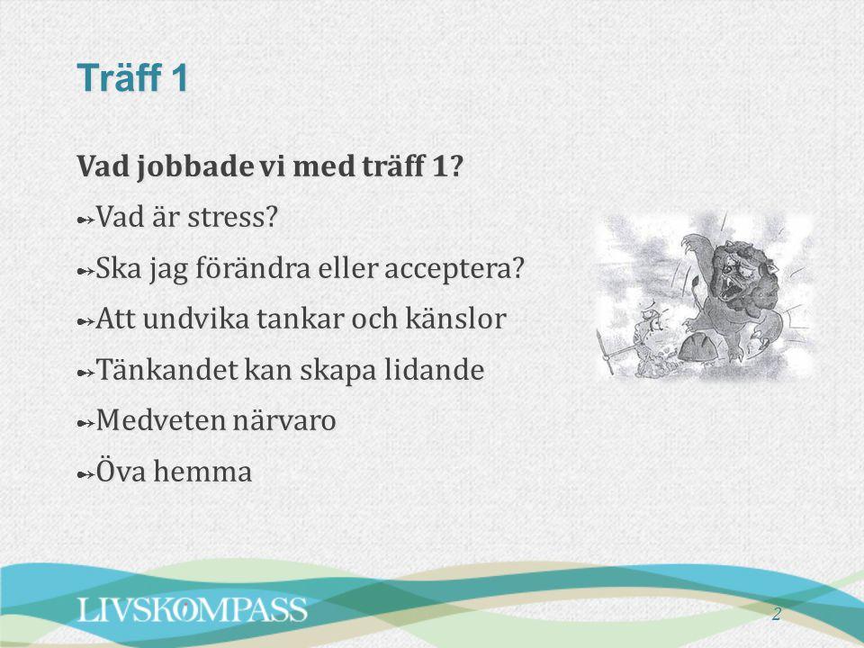 Vad jobbade vi med träff 1.➻ Vad är stress. ➻ Ska jag förändra eller acceptera.