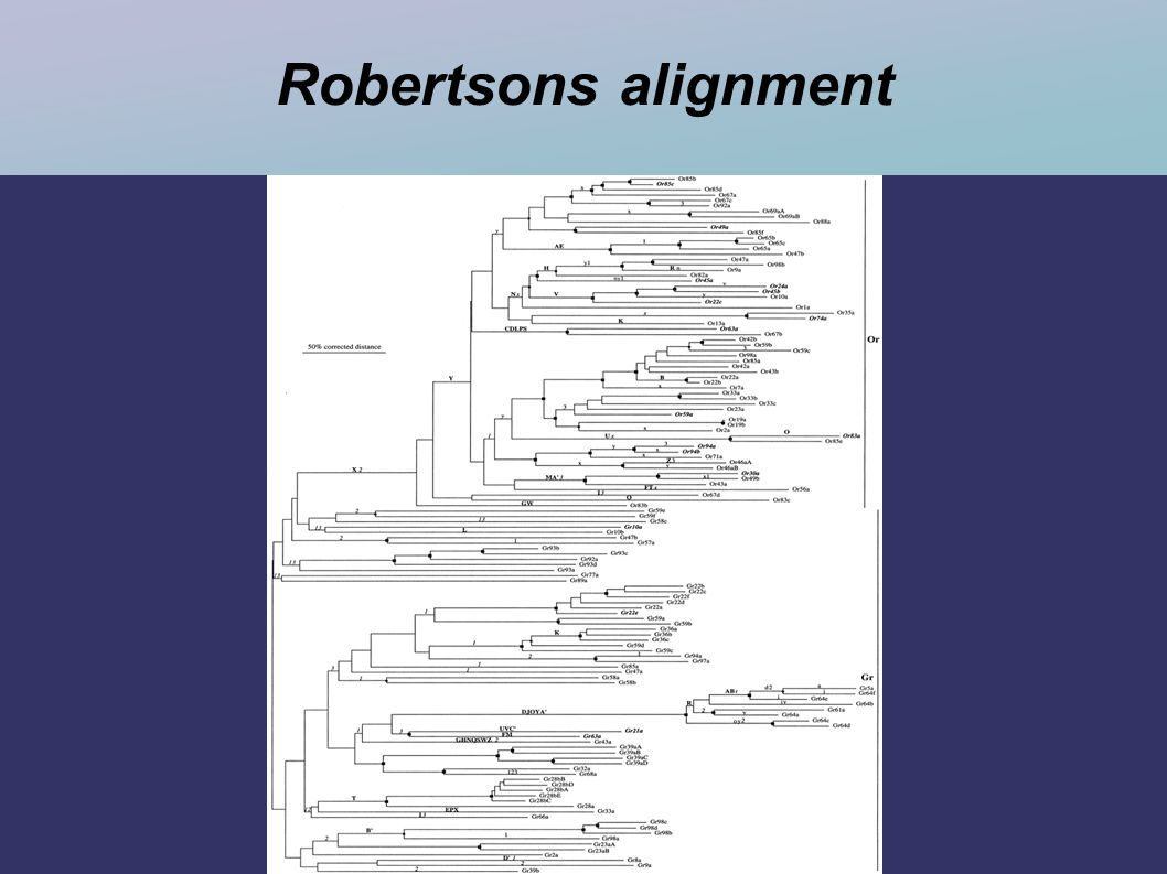 Robertsons alignment