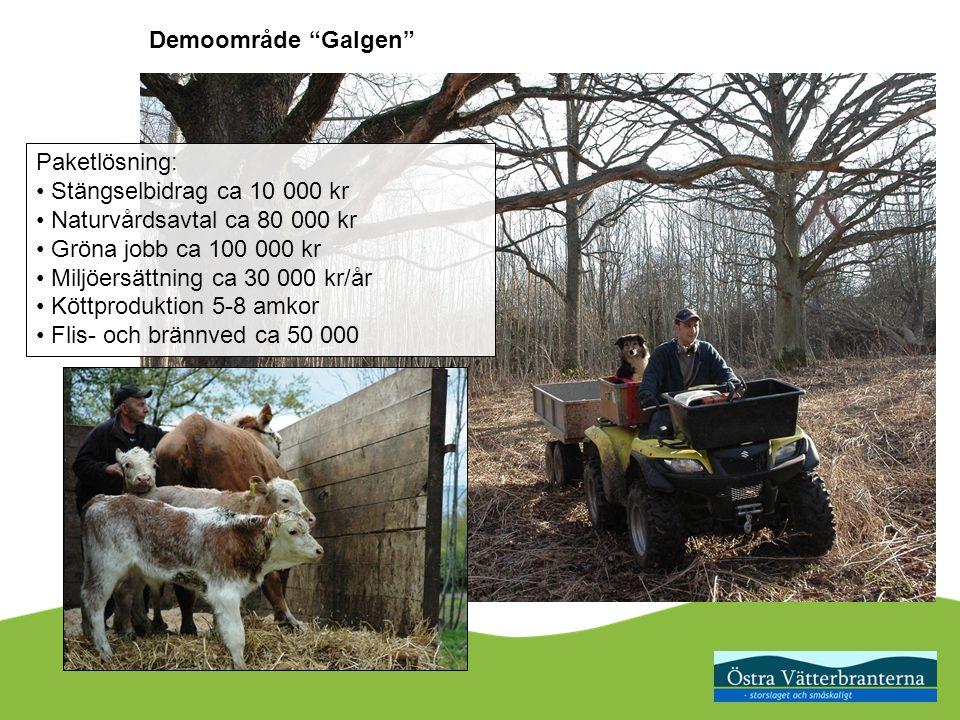 Paketlösning: Stängselbidrag ca 10 000 kr Naturvårdsavtal ca 80 000 kr Gröna jobb ca 100 000 kr Miljöersättning ca 30 000 kr/år Köttproduktion 5-8 amkor Flis- och brännved ca 50 000 Demoområde Galgen