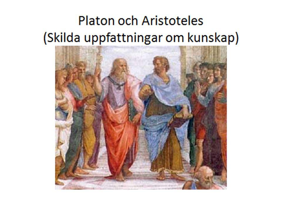 Platons vetenskapliga tänkande = rationalism = Frågor kring hur verkligheten och världen är beskaffad besvaras genom att använda logiskt tänkande och förnuft.