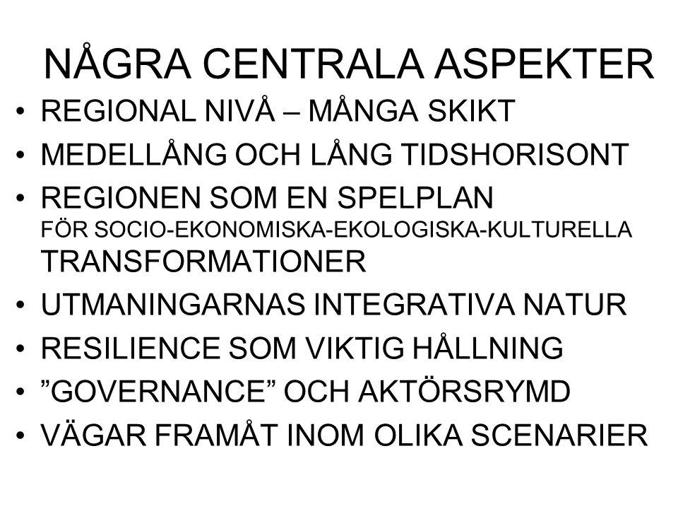 DEN REGIONALA SPELPLANEN MESO-NIVÅ – DVS.