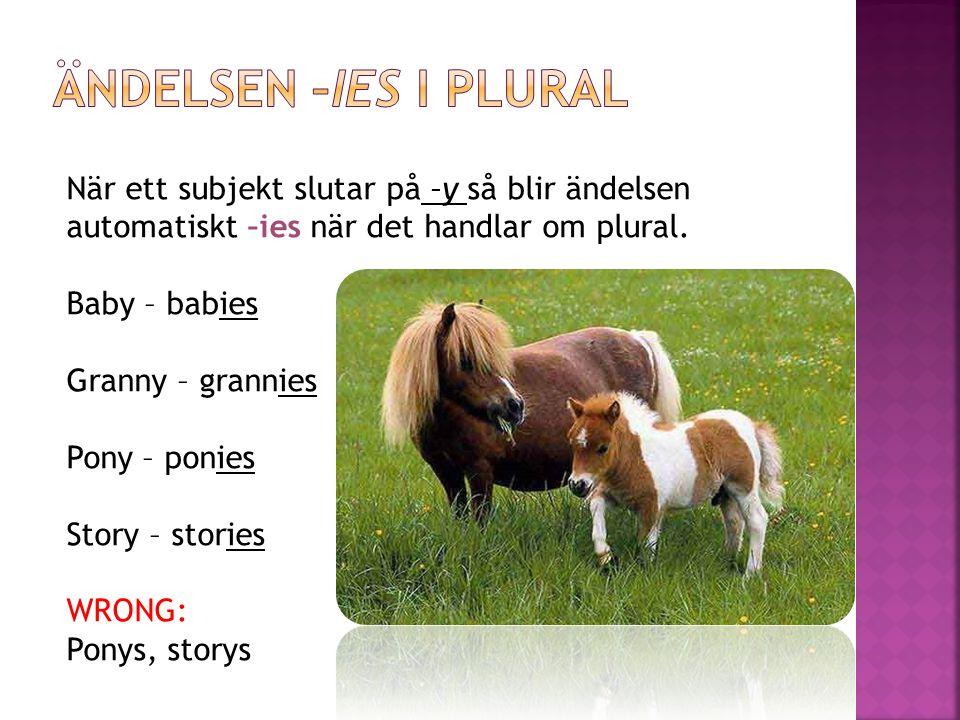 När ett subjekt slutar på –y så blir ändelsen automatiskt –ies när det handlar om plural. Baby – babies Granny – grannies Pony – ponies Story – storie