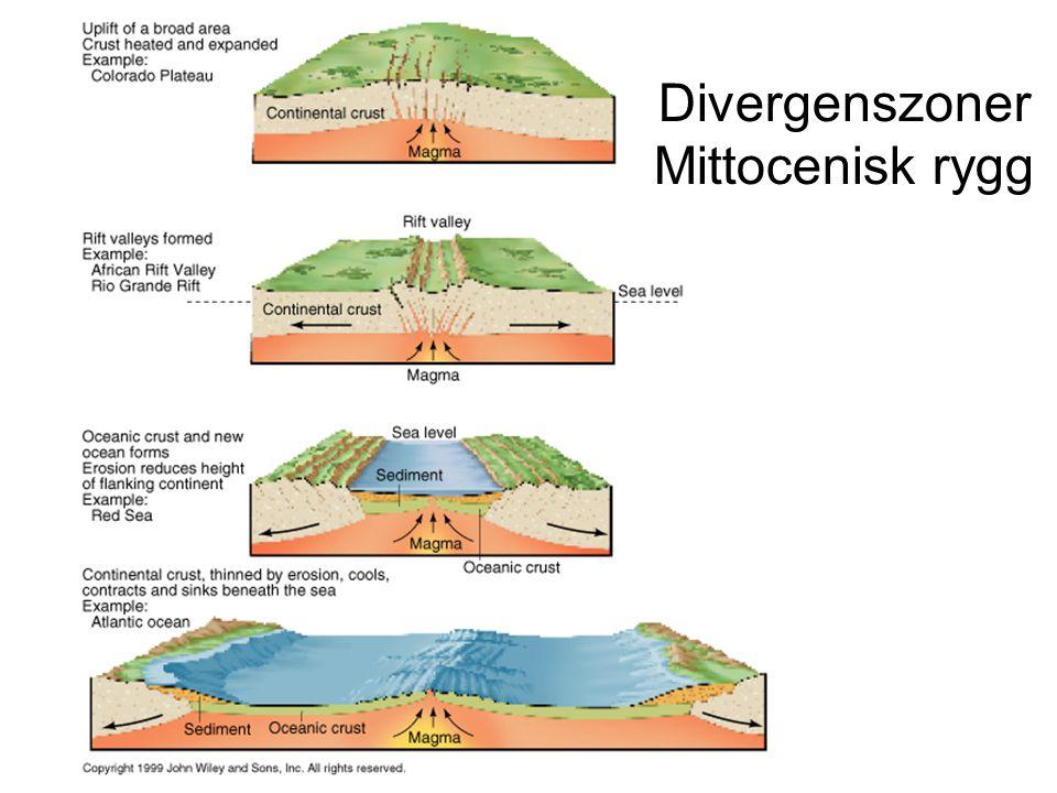 Divergenszoner Mittocenisk rygg