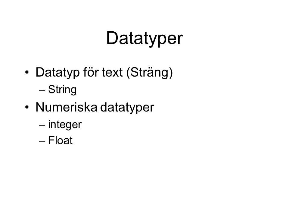 Datatyper Datatyp för text (Sträng) –String Numeriska datatyper –integer –Float