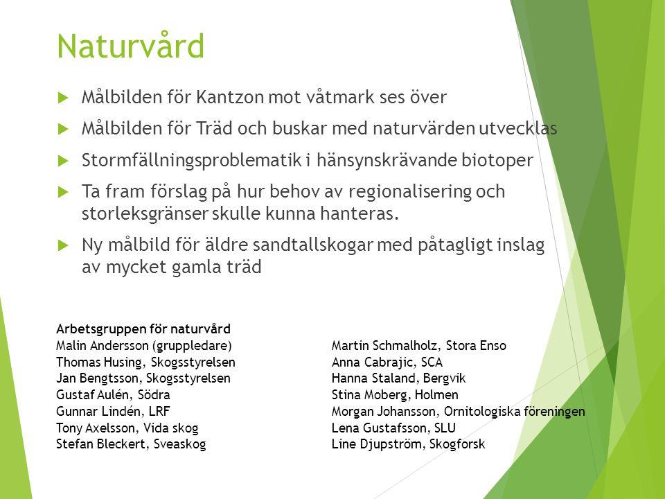 Naturvård  Målbilden för Kantzon mot våtmark ses över  Målbilden för Träd och buskar med naturvärden utvecklas  Stormfällningsproblematik i hänsyns