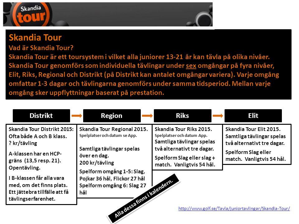 Skandia Tour Vad är Skandia Tour? Skandia Tour är ett toursystem i vilket alla juniorer 13-21 år kan tävla på olika nivåer. Skandia Tour genomförs som