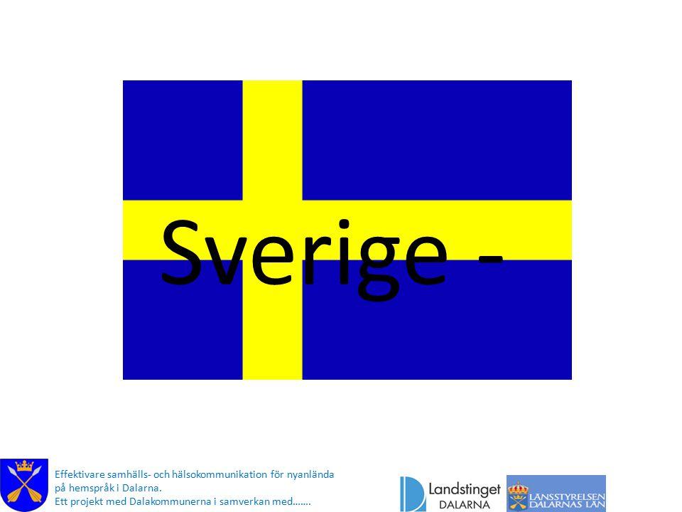 Sverige - Effektivare samhälls- och hälsokommunikation för nyanlända på hemspråk i Dalarna.