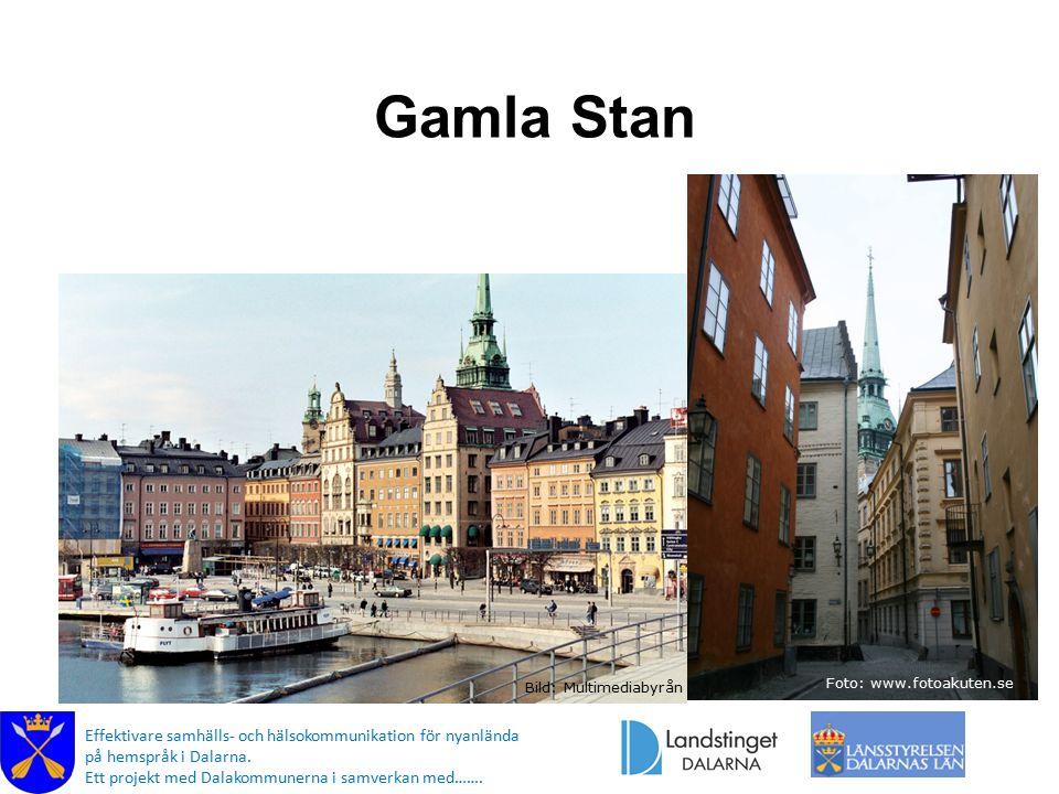 Gamla Stan Bild: Multimediabyrån Foto: www.fotoakuten.se Effektivare samhälls- och hälsokommunikation för nyanlända på hemspråk i Dalarna.