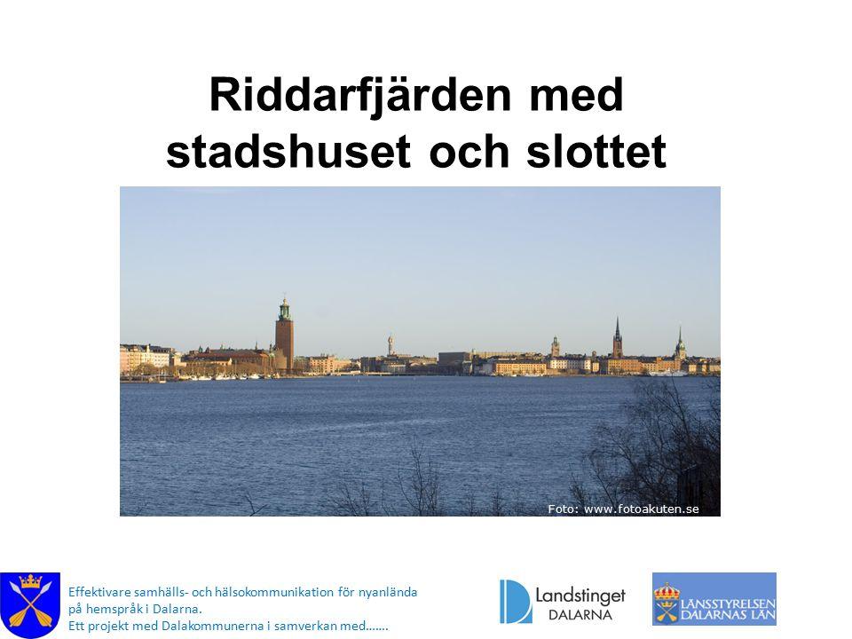 Riddarfjärden med stadshuset och slottet Foto: www.fotoakuten.se Effektivare samhälls- och hälsokommunikation för nyanlända på hemspråk i Dalarna.