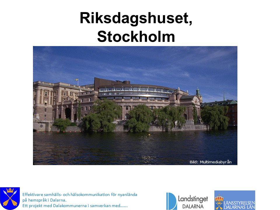 Svensk demokrati Den stora salen där Riksdagen har sina möten Effektivare samhälls- och hälsokommunikation för nyanlända på hemspråk i Dalarna.