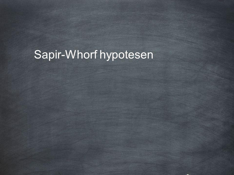 Sapir-Whorf hypotesen: I varje språks grammatik och lexikon finns en inbyggd uppfattning om världen som präglar talarnas tänkande.