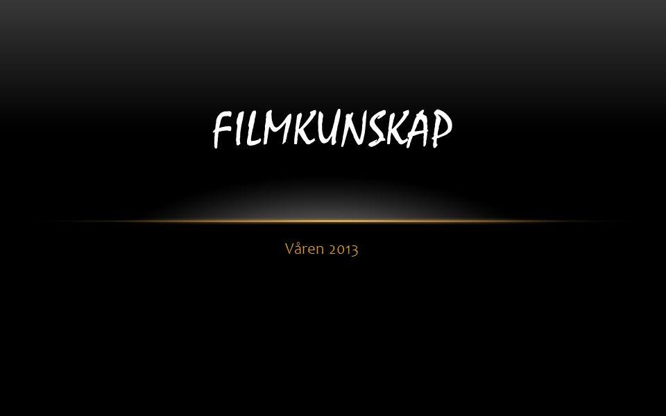 Våren 2013 FILMKUNSKAP
