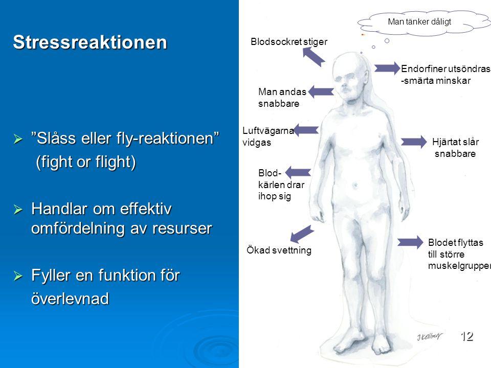 Ökad svettning Blodsockret stiger Man tänker dåligt Man andas snabbare Endorfiner utsöndras -smärta minskar Hjärtat slår snabbare Blod- kärlen drar ih