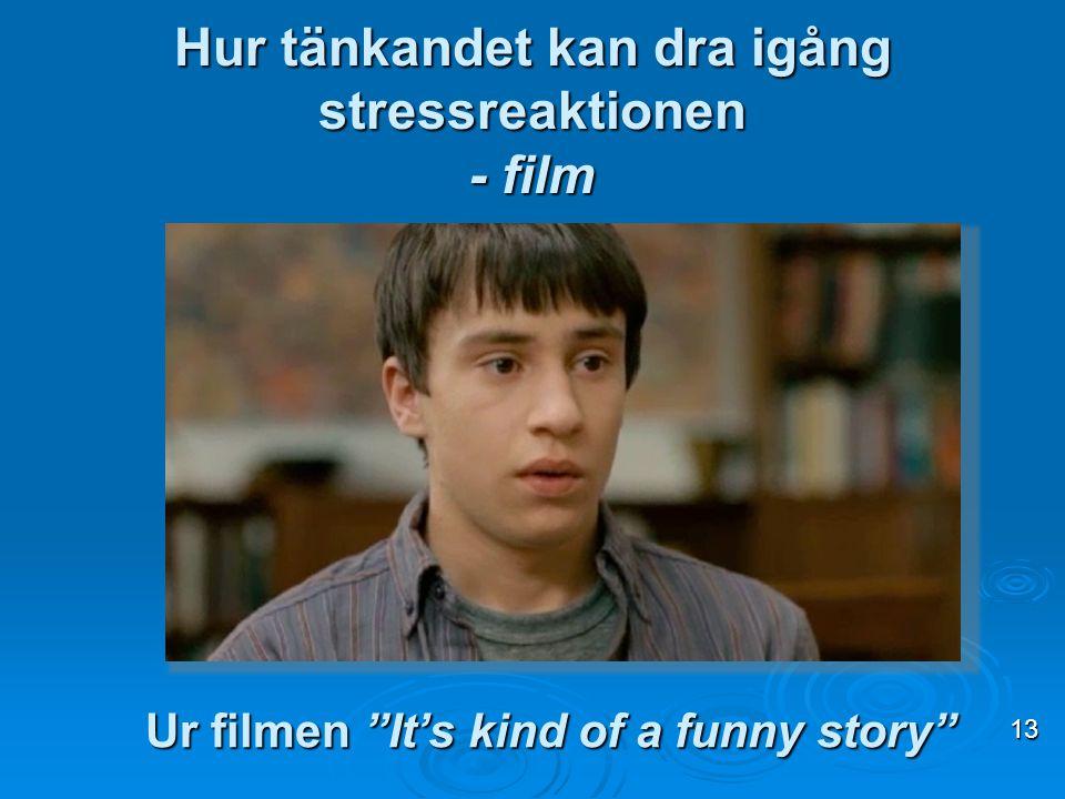 """Hur tänkandet kan dra igång stressreaktionen - film 13 Ur filmen """"It's kind of a funny story"""""""