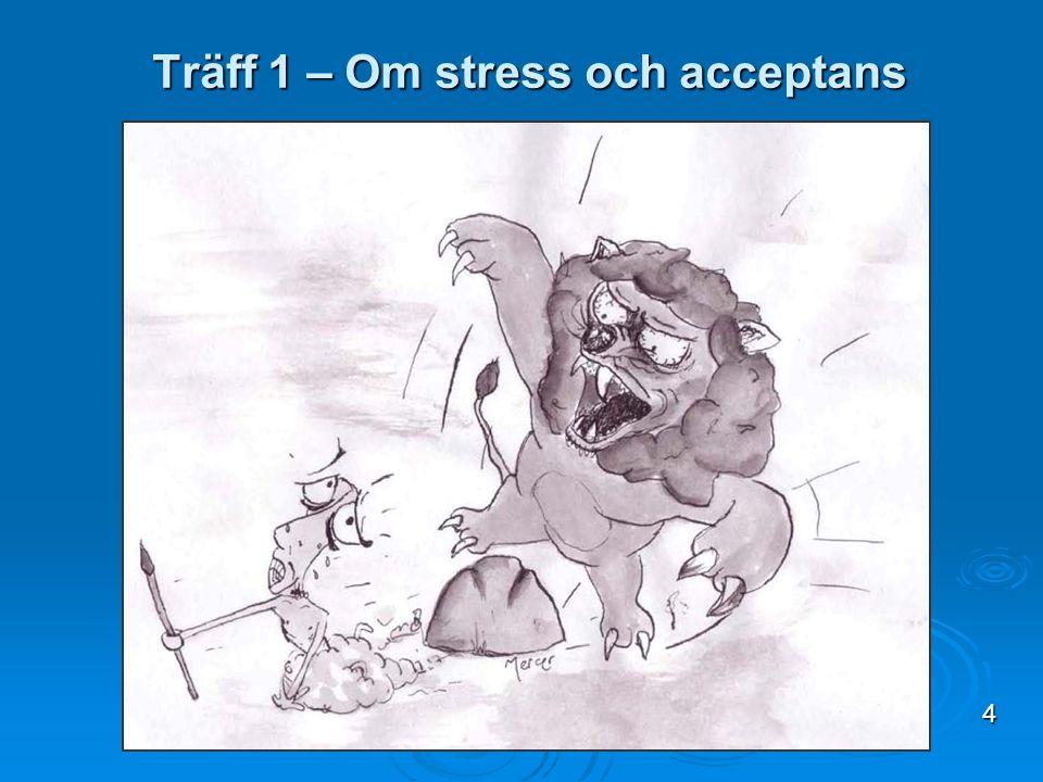 Träff 1 – Om stress och acceptans 4