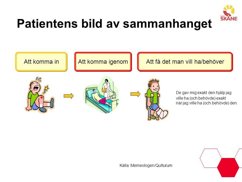 Källa: Gör och lär Sveriges Kommuner och Landsting Sjukvårdens bild av patientprocessen Första kontaktBedömningBehandlingDiagnostikUppföljning VårdbehovEffekter/resultat