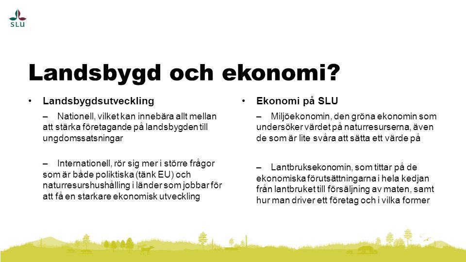 Landsbygdsutveckling –Nationell, vilket kan innebära allt mellan att stärka företagande på landsbygden till ungdomssatsningar –Internationell, rör sig mer i större frågor som är både poliktiska (tänk EU) och naturresurshushålling i länder som jobbar för att få en starkare ekonomisk utveckling Ekonomi på SLU –Miljöekonomin, den gröna ekonomin som undersöker värdet på naturresurserna, även de som är lite svåra att sätta ett värde på –Lantbruksekonomin, som tittar på de ekonomiska förutsättningarna i hela kedjan från lantbruket till försäljning av maten, samt hur man driver ett företag och i vilka former Landsbygd och ekonomi?