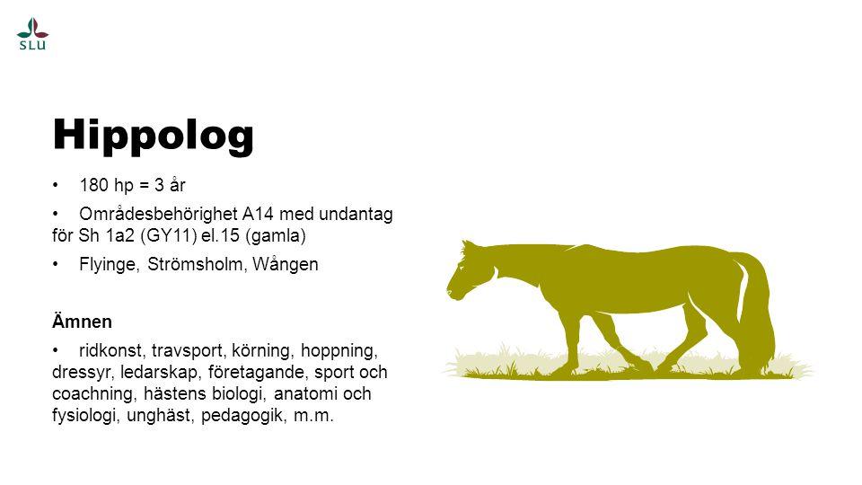 180 hp = 3 år Områdesbehörighet A14 med undantag för Sh 1a2 (GY11) el.15 (gamla) Flyinge, Strömsholm, Wången Ämnen ridkonst, travsport, körning, hoppning, dressyr, ledarskap, företagande, sport och coachning, hästens biologi, anatomi och fysiologi, unghäst, pedagogik, m.m.