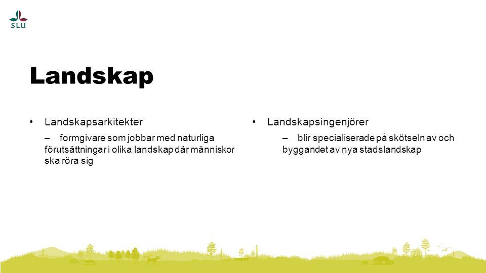 Landskapsarkitekter –formgivare som jobbar med naturliga förutsättningar i olika landskap där människor ska röra sig Landskapsingenjörer –blir specialiserade på skötseln av och byggandet av nya stadslandskap Landskap