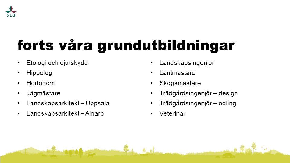 forts våra grundutbildningar Etologi och djurskydd Hippolog Hortonom Jägmästare Landskapsarkitekt – Uppsala Landskapsarkitekt – Alnarp Landskapsingenjör Lantmästare Skogsmästare Trädgårdsingenjör – design Trädgårdsingenjör – odling Veterinär