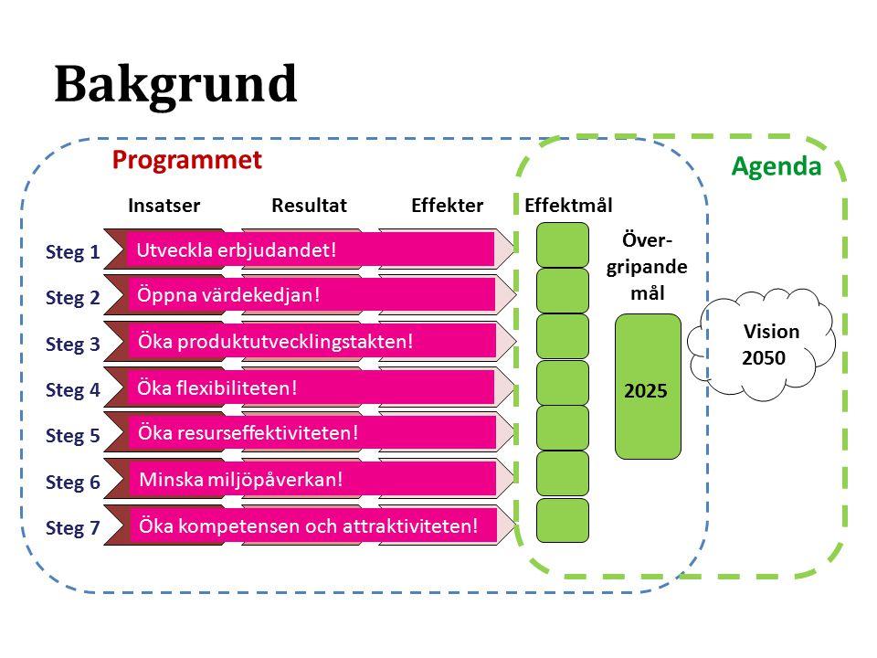 InsatserResultatEffekterEffektmål Över- gripande mål Vision Programmet Agenda 2025 2050 Steg 1 Steg 2 Steg 3 Steg 4 Steg 5 Steg 6 Steg 7 Utveckla erbjudandet.