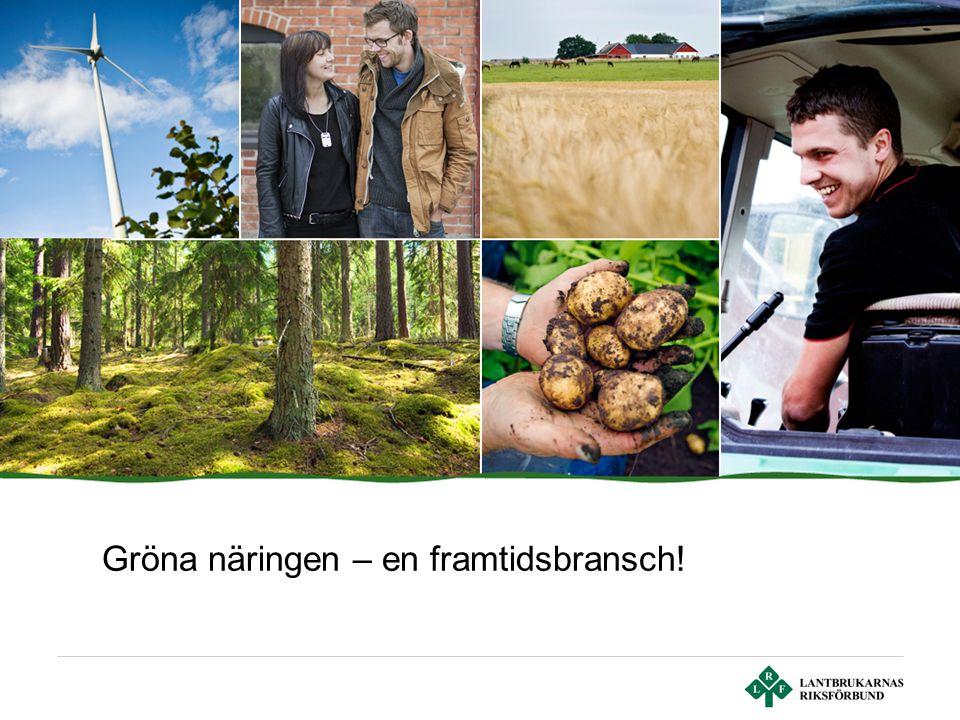 Sid 2 | Lantbrukarnas Riksförbund Välkommen till de gröna näringarna Varor och tjänster som alla behöver – 4 procent av BNP Mat, energi & skog Framtids möjligheter