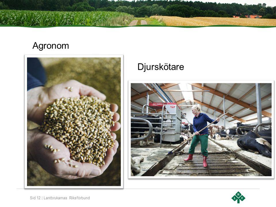 Sid 12 | Lantbrukarnas Riksförbund Djurskötare Agronom