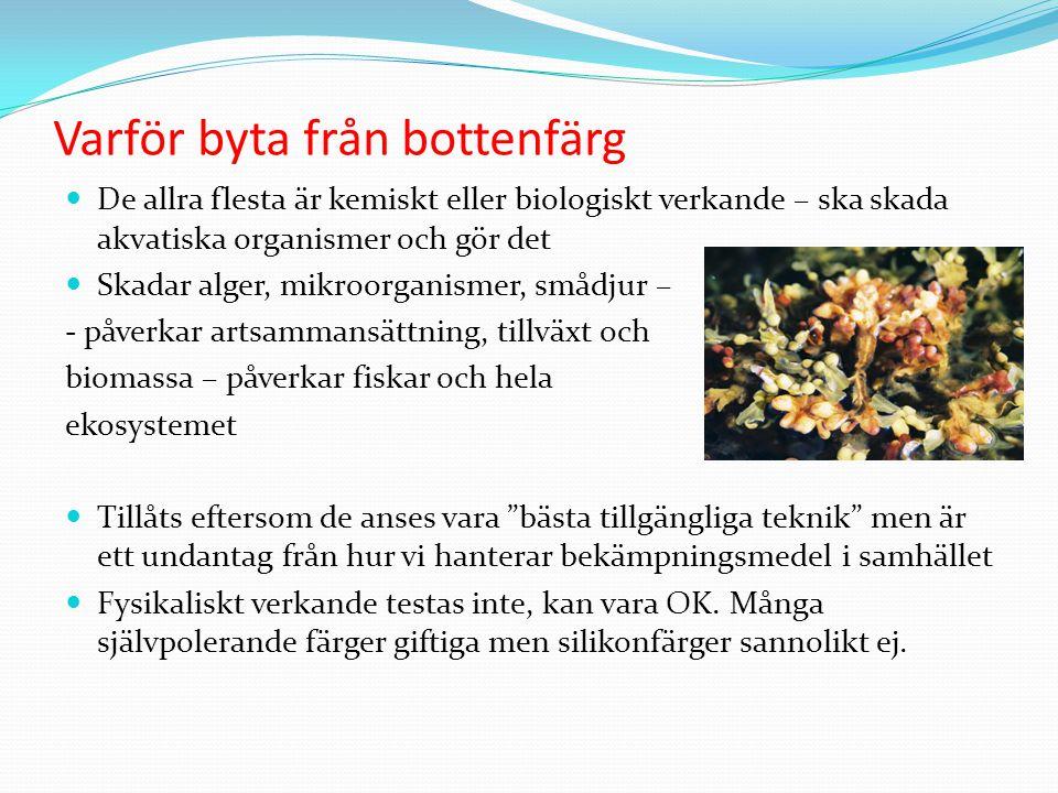 Varför byta från bottenfärg De allra flesta är kemiskt eller biologiskt verkande – ska skada akvatiska organismer och gör det Skadar alger, mikroorganismer, smådjur – - påverkar artsammansättning, tillväxt och biomassa – påverkar fiskar och hela ekosystemet Tillåts eftersom de anses vara bästa tillgängliga teknik men är ett undantag från hur vi hanterar bekämpningsmedel i samhället Fysikaliskt verkande testas inte, kan vara OK.