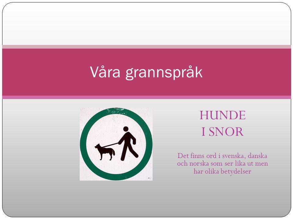 HUNDE I SNOR Det finns ord i svenska, danska och norska som ser lika ut men har olika betydelser Våra grannspråk