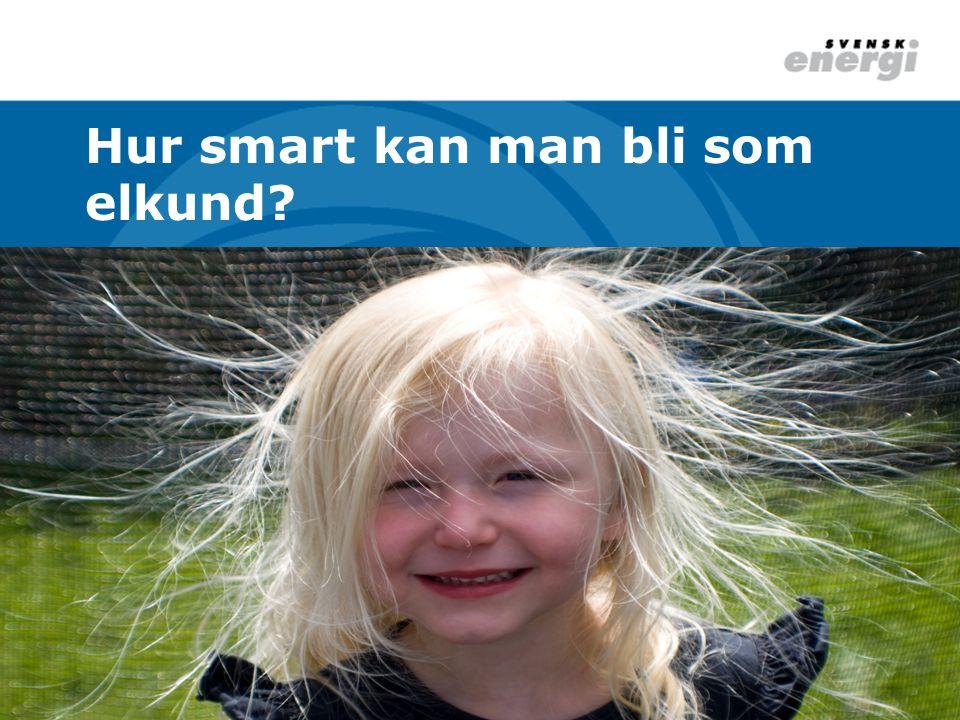 Svensk Energi - elbranschens samlade röst 169 medlemskoncerner – 351 företag 88 elproducenter – 36 447 MW 157 elnätsföretag – 5,2 miljoner kunder 106 elhandelsföretag – valfrihet för kunder
